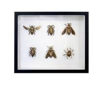 HK living Messing insekter liste