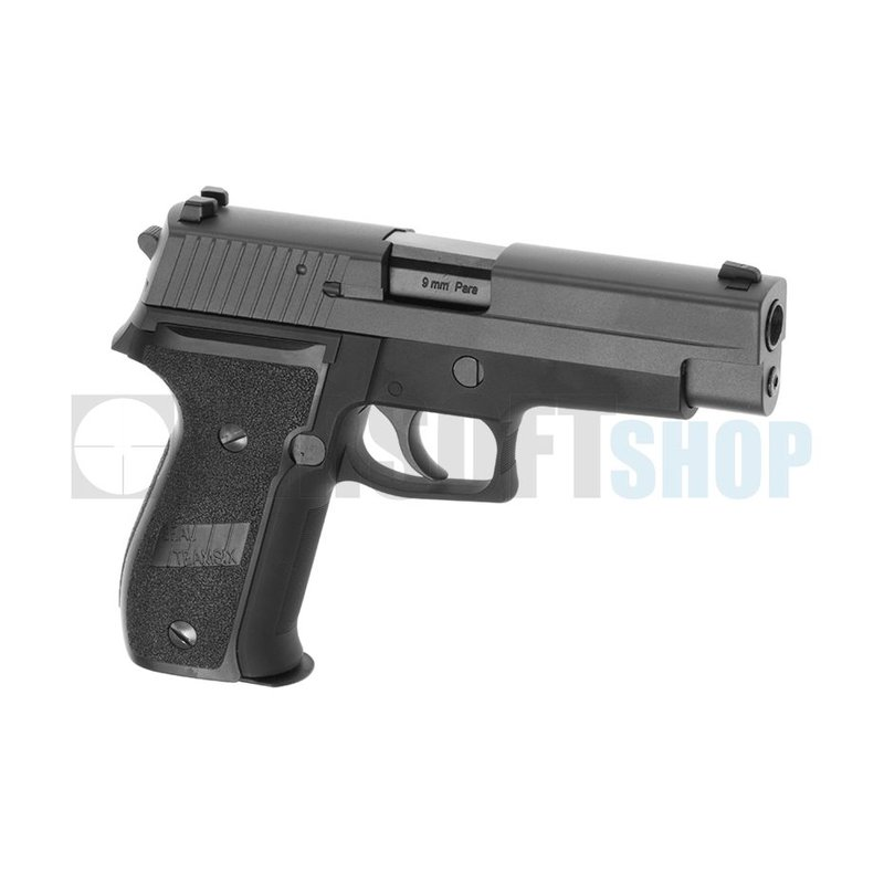 WE P229 GBB - Copy