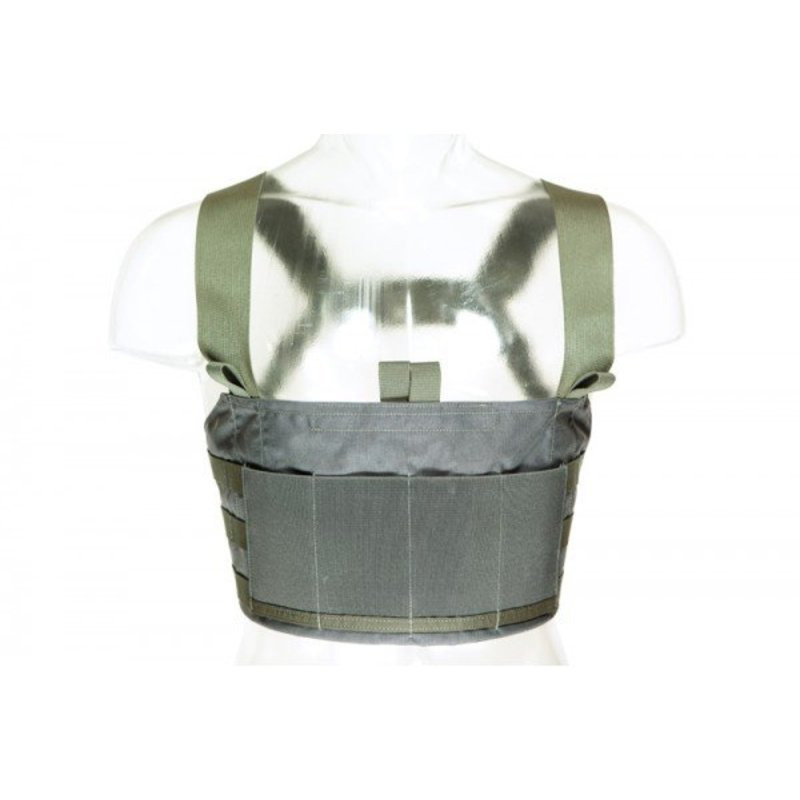 Blue Force Gear Ten-Speed M4 Chest Rig (Wolf)