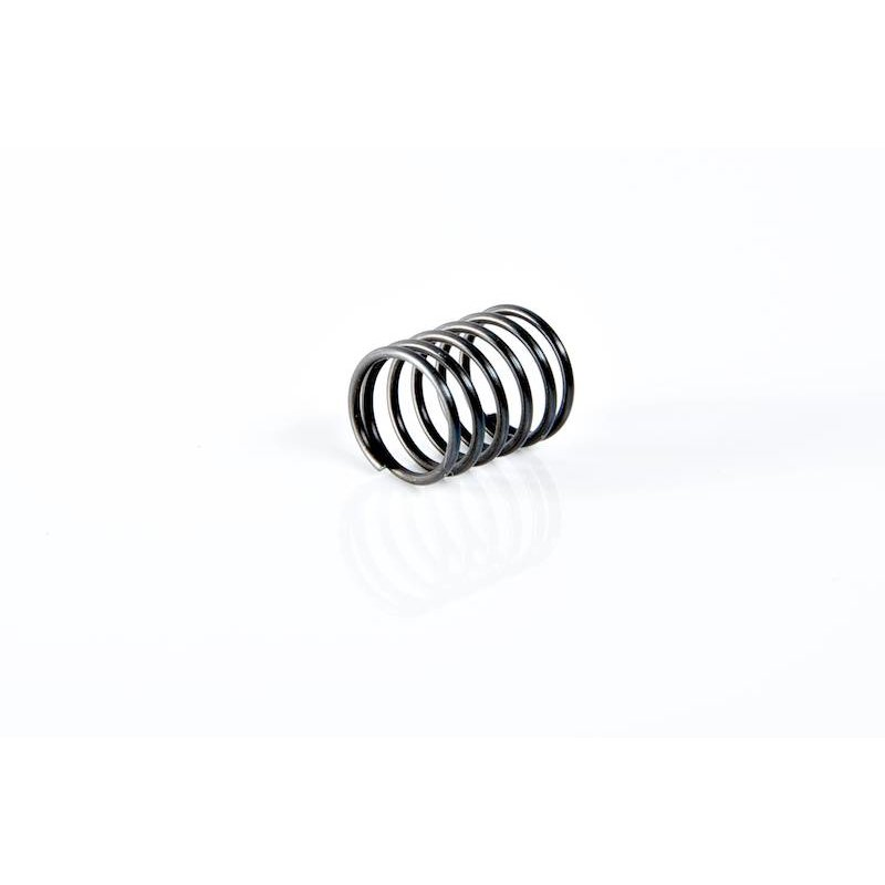 Systema PTW Forward Assist Knob Spring