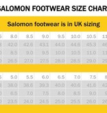 Salomon Speed Assault Shoes (Burro)