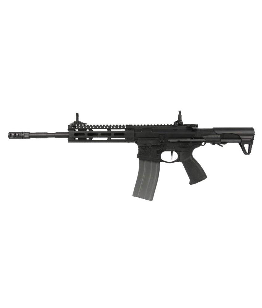 G&G CM16 Raider L 2.0 (Black)