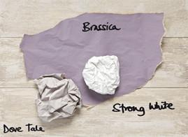 Met Brassica van Farrow & Ball is meer mogelijk dan je denkt.