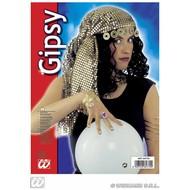 Party-sieraden: Pailletten hoofddecoratie zigeunerin