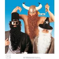 Vermommingen: Vikingbaard met snor diverse kleuren