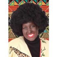 Carnaval- & feest accessoires: Kroespruik Afro