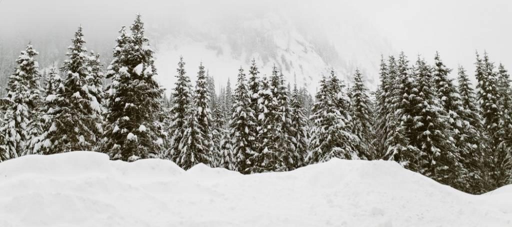 De beste tips voor het kopen van een winterjas!