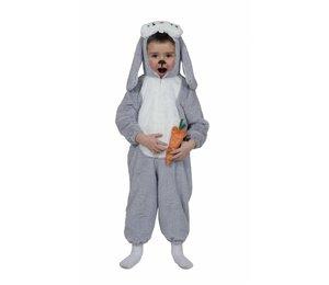 Babyfeestkleding: Blauwe Bunny