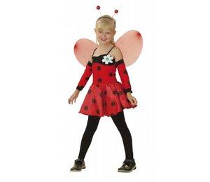 Baby feestkleding: Lieveheersbeestje