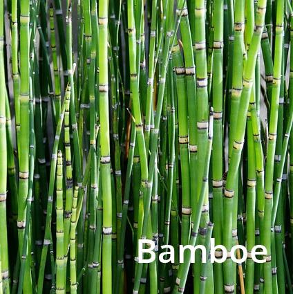 Bamboe kussen - bamboekoolstof /Anti stress 50x70cm