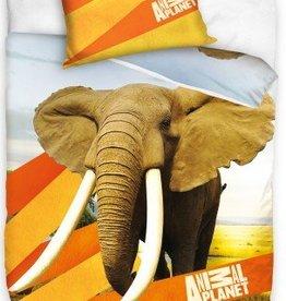 Animal Planet, Olifant - Dekbedovertrek