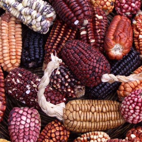 Peruviaanse keuken: ceviche en eetbare klei