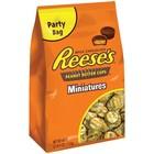 Reeses Mini Peanut Butter Cups XXL 1,13 kilo