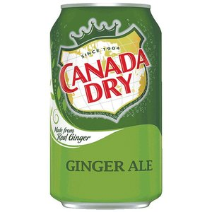 Canada Dry Ginger Ale USA 355ml