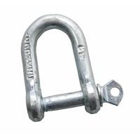 Stahl-Schäkel D-Typ 8mm