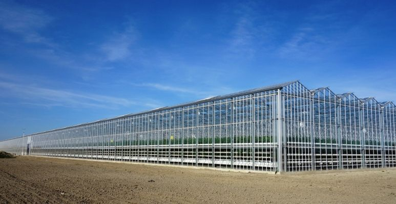 Staalkabel voor kassen- en serrebouw