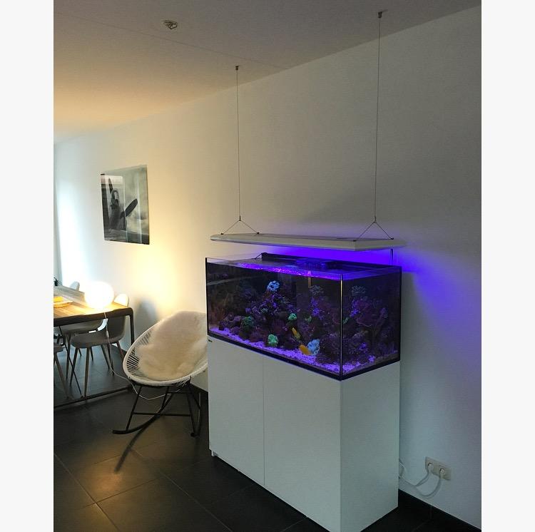 aquarium lampen ophangen