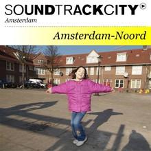Nienke Rooijakkers Soundtrackcity Amsterdam-Noord: Vogelbuurt en IJplein - De meiden van de meeuw