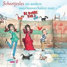Sunna Borghuis Scheetjesles - En andere voorleesverhalen over de bende van vier