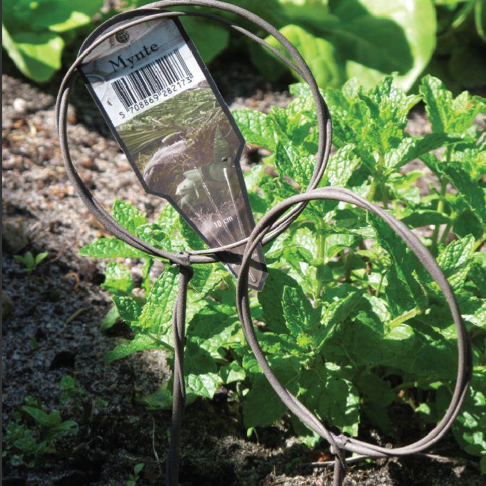 4 x Ø 10 cm / hoogte 40 cm plantenlabels