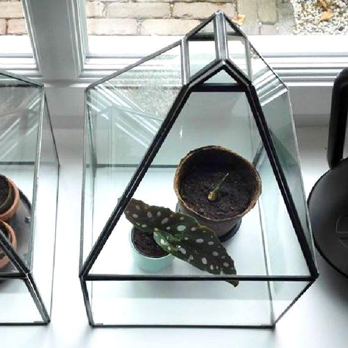 green house / kweekkasje