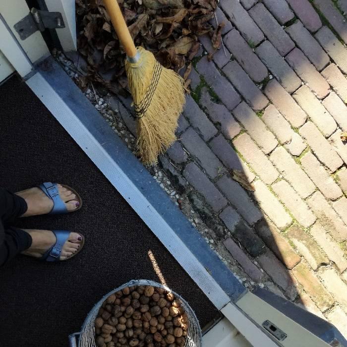 herfst - rapen, plukken en vegen