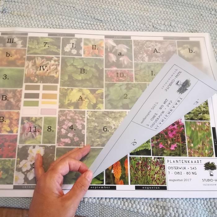 beplantingsplan • seizoensoverzicht