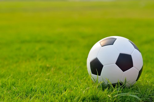 Sportveld en speelgazon graszaad