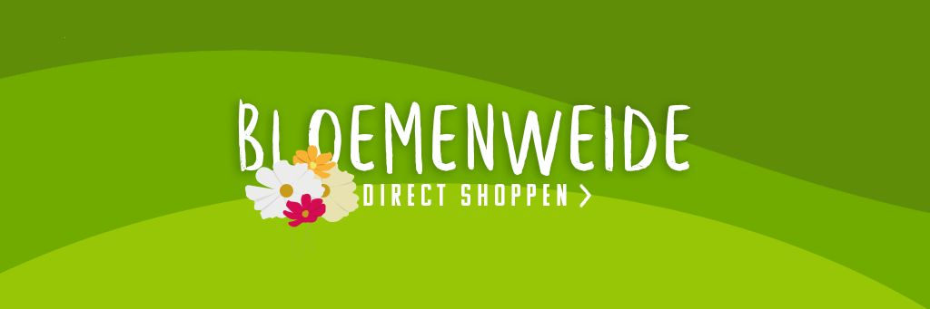 Bloemenweide / Bloemenmengsels