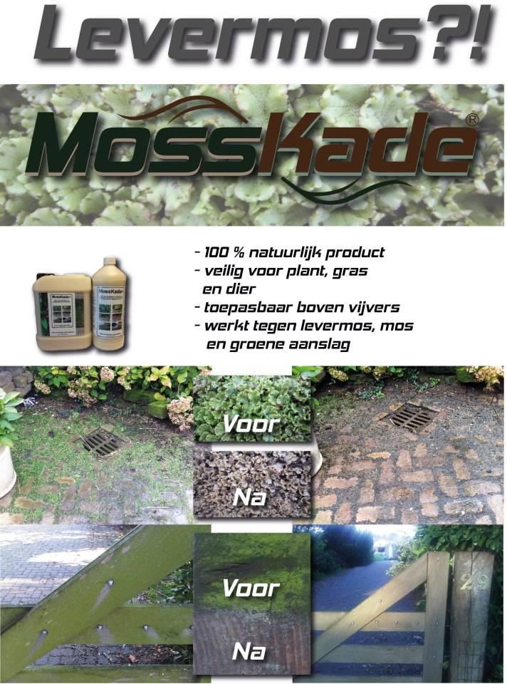 Mosskade, duurzaam mossen en algen bestrijden.