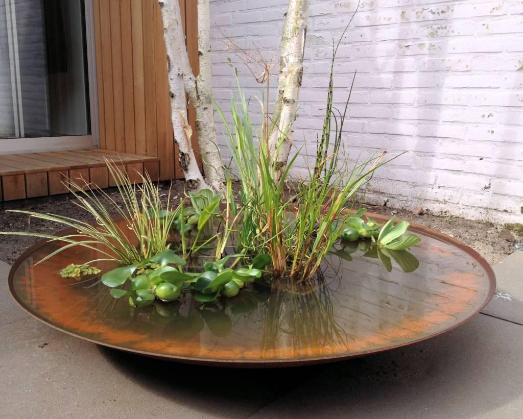 Waterschaal cortenstaal 100 cm compleetgroen - Bamboe in bakken terras ...
