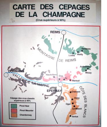 Waar groeien de drie champagnedruiven?