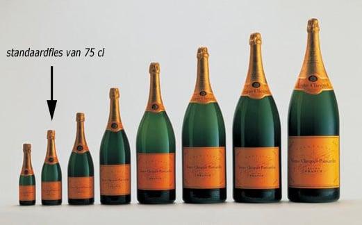 Champagne Flesformaten