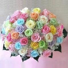 Betekenis rozen