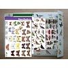 Tringa paintings 36 herkenningskaarten natuur & opbergmap