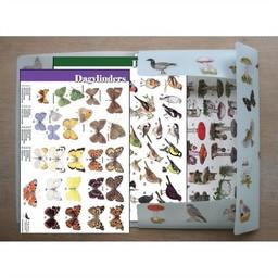 Tringa paintings natuurkaarten 36 herkenningskaarten natuur & opbergmap