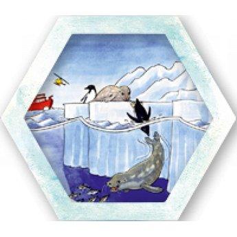 Sunny games Antarctica - Alsof je echt op de zuidpool zit!