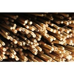 BAMBOX Bouwen met bamboe - 500 stuks bamboestokjes 30 cm
