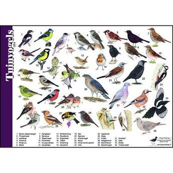 Tringa paintings Natuur zoekkaart Tuinvogels