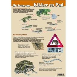 Tringa paintings natuurkaarten Herkenningskaarten Het leven van Kikker en Pad