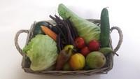 Ambachtelijke streekproducten uit het Rijk van Nijmegen gemaakt van groente en fruit