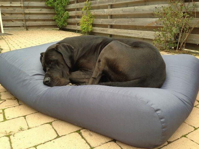 Dog's Companion� Hondenkussen staalgrijs vuilafstotende coating