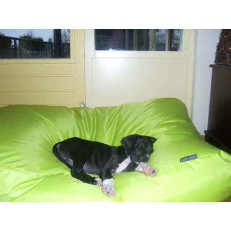 Dog's Companion® Hondenbed Small Lime nylon