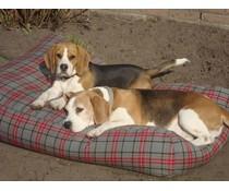 Dog's Companion® Hondenbed medium scottish grey