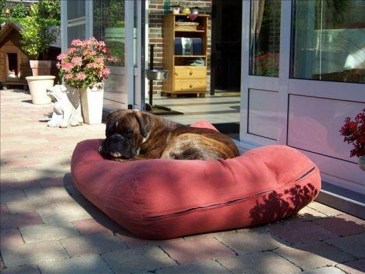Dog's Companion® Hondenbed large steenrood