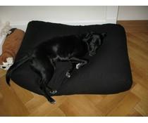 Dog's Companion® Hondenbed medium zwart