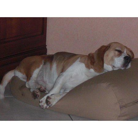 Dog's Companion® Hondenbed camel extra small