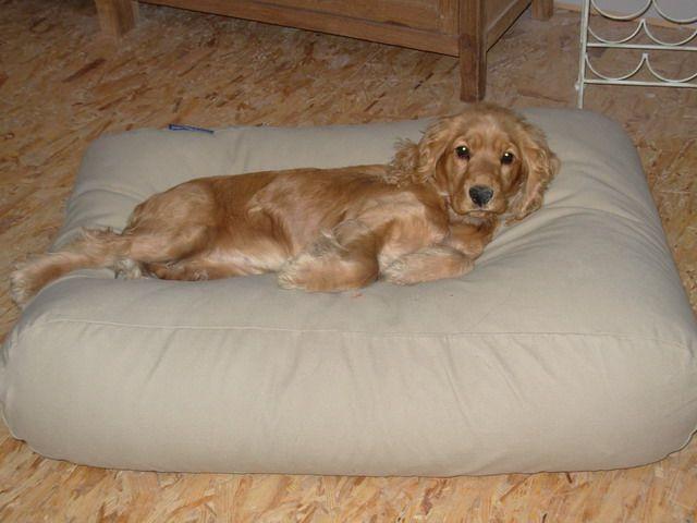 Dog's Companion® Hondenbed medium beige