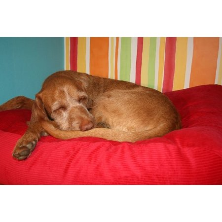 Dog's Companion® Hondenbed rood ribcord medium