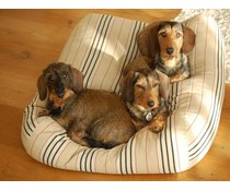Dog's Companion® Hondenbed small country field streep